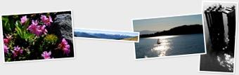 View Olympic Peninsula